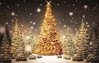 Vœux de Noel